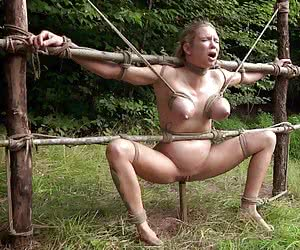 Category: outdoor tortures